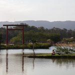 Meditação na margem do lago