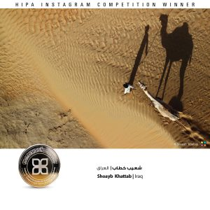 hipa-photo-contest-instagram-shadows-winners5